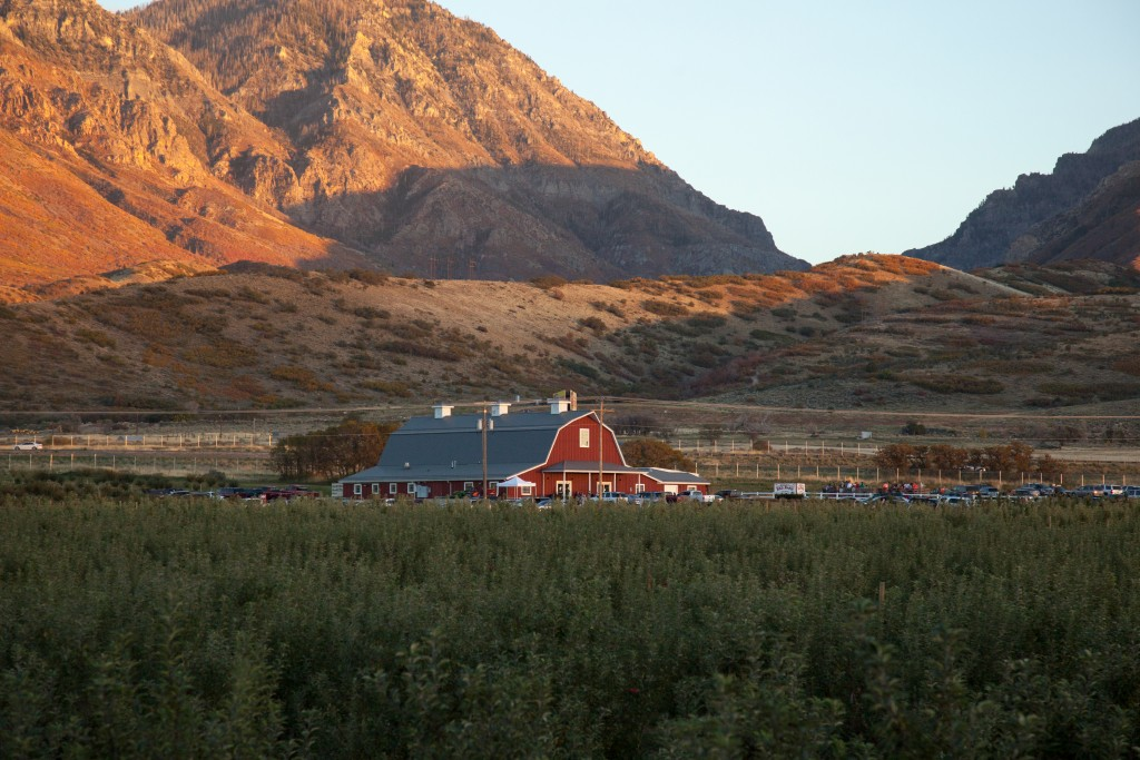 Red Barn Beside the Mountains