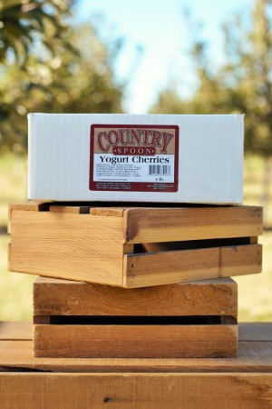 Country Spoon Yogurt Cherries 4lb